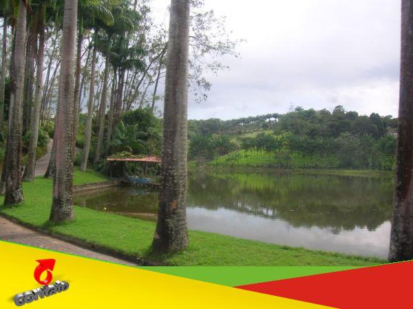 Passeio ecológico no município de Boca da Mata