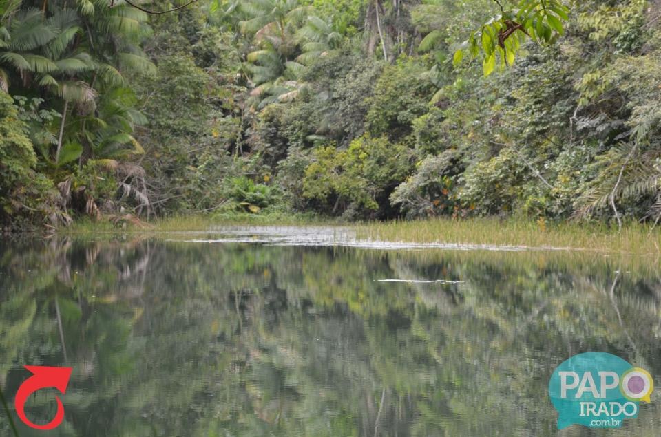 Gincana Ecológica Boca da Mata